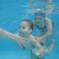 Plávanie pod vodou 19